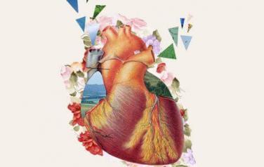 heart до 50х500_1