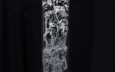 Колба №8, 93х15 см., полимеры, оргстекло, смеш. тех., 2020