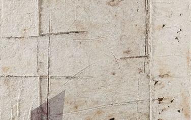 Палимпсест-2. 141х105. 2011. Бумажная масса, рельеф, сетка из гофрокартона, какао порошок, акрил.